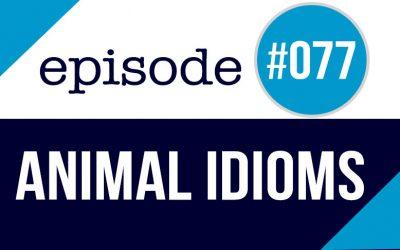 #077 Expresiones de Animales en Inglés con una historia