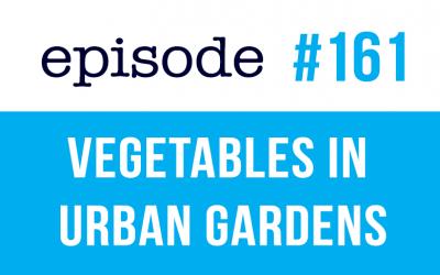 #161 Vocabulario en inglés – Hortalizas en los huertos urbanos